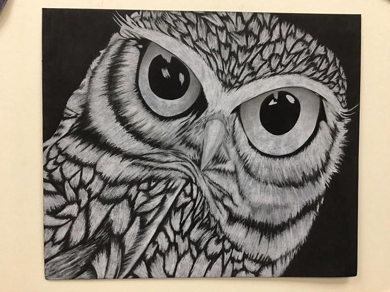 owl art.jpg